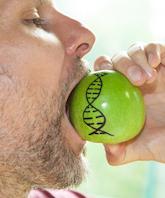 Bild einer DNA