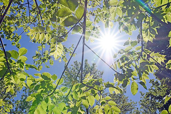 Die Sonnenstrahlen bringen Zuversicht. Wie wir uns die verlorene Freiheit zurückholen und sie genießen können, berichtet die aktuelle Unizeit. Foto: Uni Graz/Tzivanopoulos