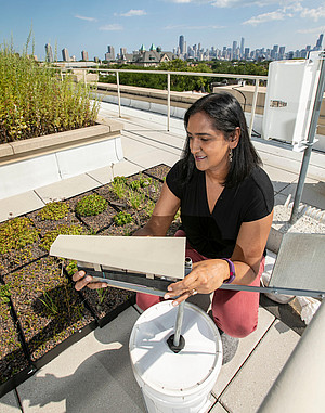 2018 08/22/18 assistant professor, Bala Chaudhary, Department of Environmental Science and Studies, College of science and health, undergraduate research, LPC, lincoln park campus, mcgowan south, greenroof, green roof, urban mycorrhizas, research, pollution, urban garden, ecology, soil, data analysis, environmental science