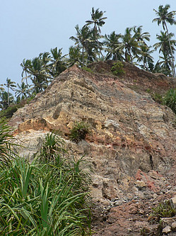 Coastal cliff at Varkala (Kerala, SW India) exposing marginal marine deposits of the Ambalapuzha Formation (early-middle Miocene).
