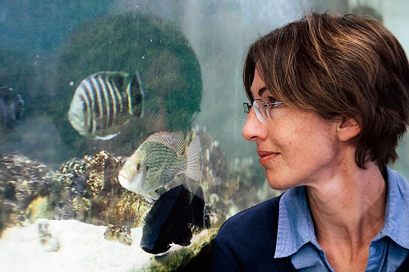 Kristina Sefc erforscht Evolution und Verhalten von Buntbarschen. Foto: Uni Graz/Kanizaj