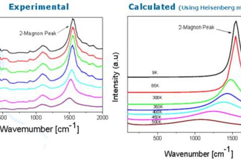 Comparison of measured and calculated Raman spectra of NiO nanoparticles