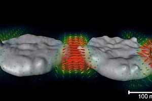 3D-Darstellung von Plasmonenfelder an Nanopartikeln. Foto: Haberfehlner - TU Graz