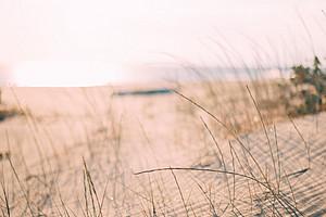 Dünen voll Sand, Sand im Getriebe, Lean Management