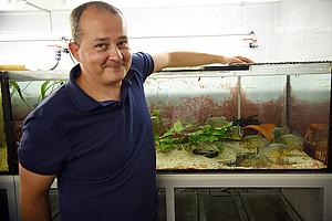 Neurobiologe Boris Chagnaud forscht mit kommunikativen Piranhas. Foto: Uni Graz/Schweiger