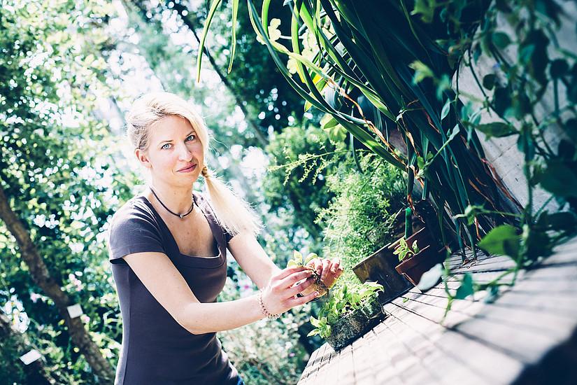 Das Freiland-Labor im Botanischen Garten der Uni Graz vermittelt aktuelle Forschung über Pflanzen in leicht verständlichen Kursen. Foto: Uni Graz/Kanizaj
