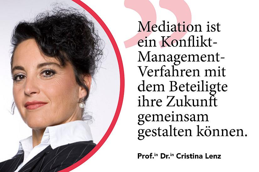Lenz Statement - Mediation