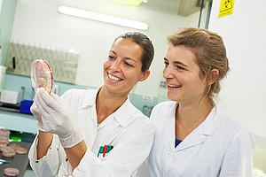 Das Programm doc.funds des österreichischen Wissenschaftsfonds FWF zielt darauf ab, Qualitätsstandards in der Doktoratsausbildung zu setzen und die Karrierechancen exzellenter junger WissenschafterInnen zu fördern und zu sichern. Foto: Lukas Grumet.