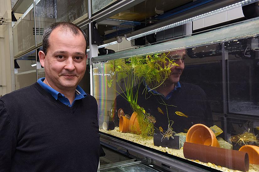 Boris Chagnaud ist seit 1. September 2018 Professor für Zoologie an der Universität Graz. Foto: Uni Graz/Pichler
