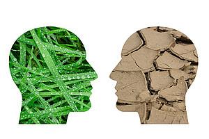 Wie gehen die Menschen mit Unsicherheiten und Risiken hinsichtlich der klimatischen Veränderungen um? NachwuchsforscherInnen der Uni Graz setzen sich mit dieser Frage auseinander. Foto: pixabay.com