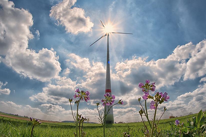 Die ForscherInnen betonen, dass Klimaschutz eine enorme Chance für Innovation sei. Foto: pixabay.com