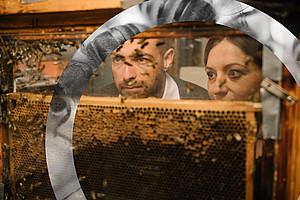 Im Artificial Life Lab setzen ForscherInnen künstliche Intelligenz ein, um das Verhalten von Bienen zu studieren und sie auch fit für Bedrohungen aus der Umwelt zu machen. Foto: Uni Graz/Kernasenko.