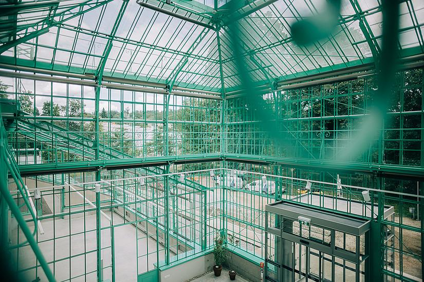 Das historische Glashaus im Botanischen Garten Graz ist saniert und erstrahlt in neuem Glanz. Foto: Uni Graz/Kernasenko