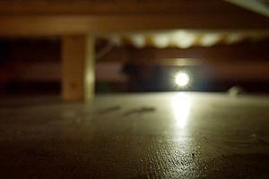 """Den """"ganz normalen Wahnsinn"""" von Sicherheitsgesellschaften nimmt sich der Film """"Meine Paranoia ist nicht unbegründet vor"""". Foto: KK."""