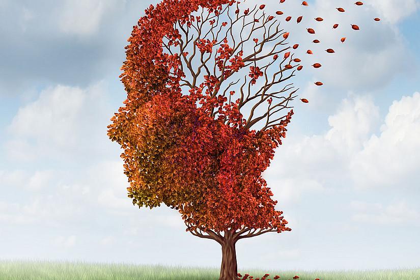 Die Gesellschaft muss sich an Veränderungen gewöhnen, und mit PatientInnen, die an Alzheimer oder Demenz erkrankt sind, würdevoll umgehen. Foto: Schutterstock