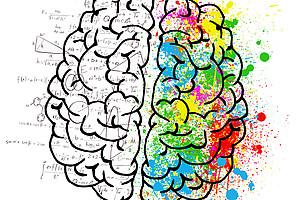 Das Verarbeiten mathematischer Prozesse wird im Gehirn sichtbar. Der Grazer Psychologe erforscht wie man diese Verbindungen stimulieren kann, um zum Beispiel den Lernerfolg zu verbessern. Foto: pixabay.com