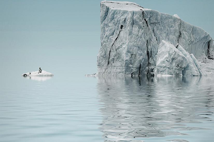 Die Ringvorlesung Sustainability4U möchte für den Klimaschutz sensibilisieren und zeigen, was jede/r dazu beitragen kann. Foto: Michaelmode/pixabay.com