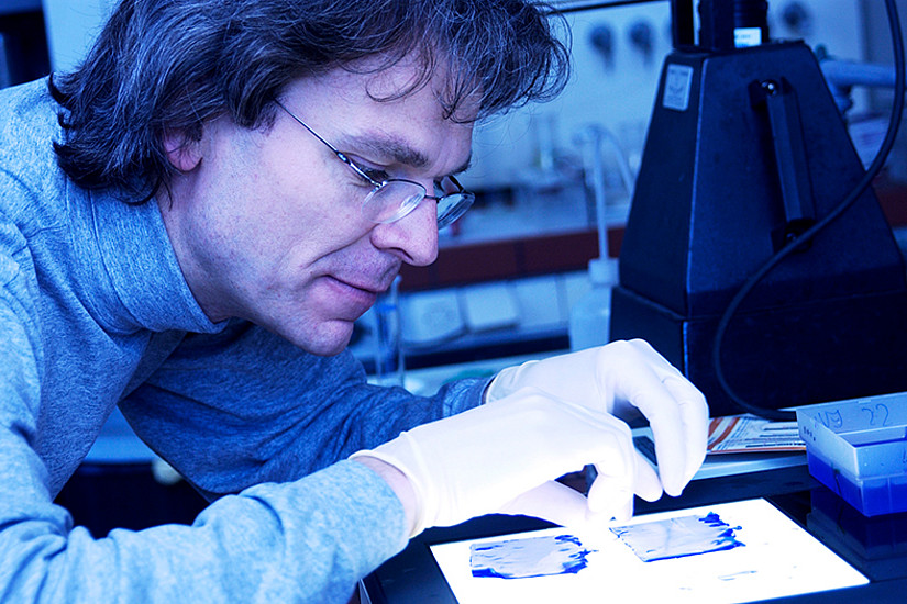 Andreas Kungl verfolgt einen unkonventionellen Forschungsansatz zur Bekämpfung von SARS-CoV-2. Eine Fundraising-Kampagne begleitet dieses Forschungsprojekt. Foto: Jorj Konstantinov.