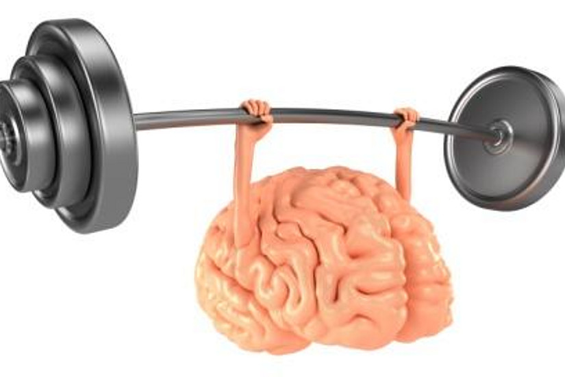 brain, mind, mental, power, strong, health, success, idea, solve, think, creative, imagination, thinking, intelligence, barbell, exercise, fitness, lift, organ, concept, white, isolated