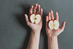 sliced apple, Beobachtungen bis zum Kern, Systemische Beratung
