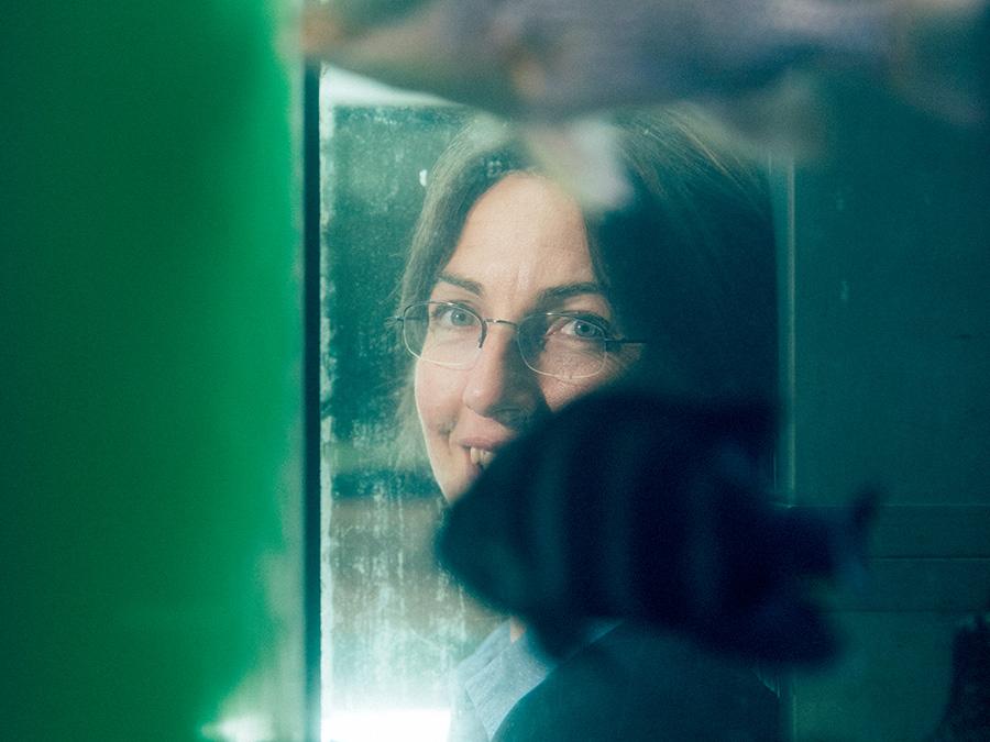 Kristina Sefc hat den Durchblick in der Verhaltensforschung: Sie klärte, warum manche Buntbarsche Nebenbuhler ins Nest lassen. Foto:Uni Graz/Kanizaj